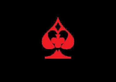 logo site tourdemagiecartes.com